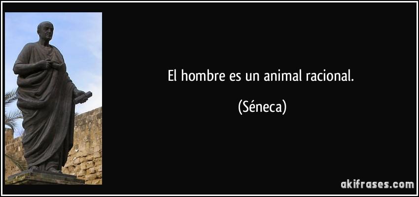 Animal racional