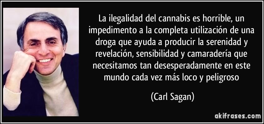 La Ilegalidad Del Cannabis Es Horrible Un Impedimento A La