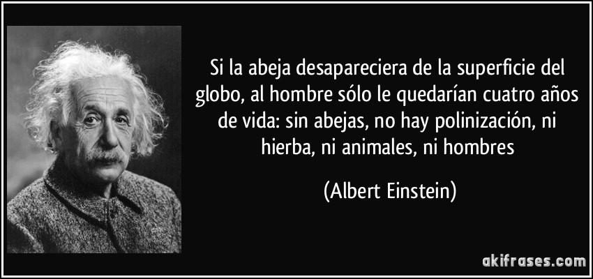 Si la abeja desapareciera de la superficie del globo, al hombre sólo le quedarían cuatro años de vida: sin abejas, no hay polinización, ni hierba, ni animales, ni hombres (Albert Einstein)