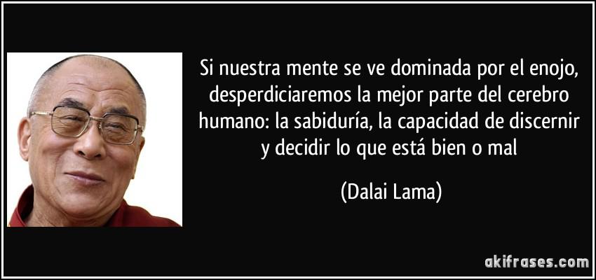 Si nuestra mente se ve dominada por el enojo, desperdiciaremos la mejor parte del cerebro humano: la sabiduría, la capacidad de discernir y decidir lo que está bien o mal (Dalai Lama)